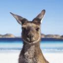Tourism Australia logo icon