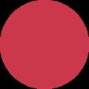 Toyotomi Usa logo icon