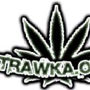 Trawka logo icon