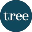 Tree Accountancy logo icon