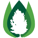 Treebark Termite logo