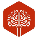 Treehouse Tech logo icon