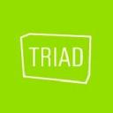 Triad logo icon
