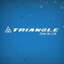 Triangle Tire Usa logo icon