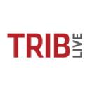 Trib Live logo icon