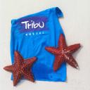 Tribu Hostel logo icon