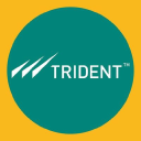 Trident Limited logo icon