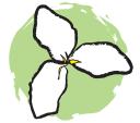Trillium Montessori logo icon