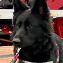 Tri-State Trailer Sales , Inc. logo