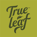True Leaf Medicine Inc logo icon