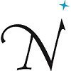 True North Networks logo icon