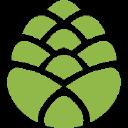Spruce logo icon