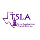 Tsla logo icon
