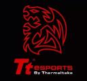 Tt E Sports logo icon