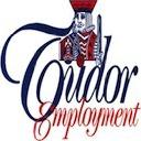 Tudor Employment logo icon