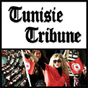 Tunisie Tribune logo icon
