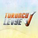 Turuncu Levye logo icon