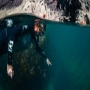 Tyf logo icon