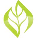 Upleaf logo icon