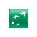 usa.bnpparibas logo icon