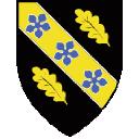 University Of Wales Trinity Saint David logo icon