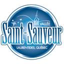 Vallée Saint logo icon