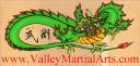 Valley Martial Arts Supply logo