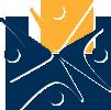 Vanguard logo icon