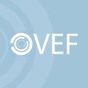 Vef logo icon