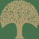 Veldeman logo icon