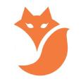 VeloVixen Logo