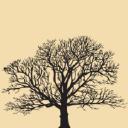 Ventosa Vineyards LLC logo
