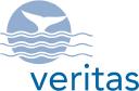 Veritas Insurance Group logo icon
