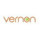 Vernon Technology logo icon