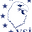 VETERAN SOLUTIONS, INC. logo