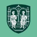 Viborg logo icon