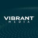 Vibrant Media logo icon