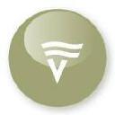 Victoria Foundation logo icon