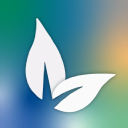 Vine Brook Homes logo icon