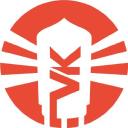 Vintage King Audio logo icon