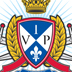 Vip Airsoft logo icon