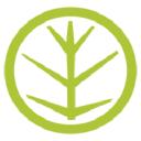 Virid Logo