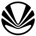 Vir Zoom logo icon