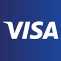 Visa Infinite logo icon