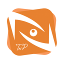 Tn P Visual Workplace logo icon