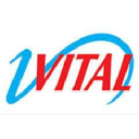 Vital International logo icon