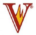 Vitcas logo icon