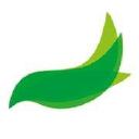 Vitego Kg logo icon