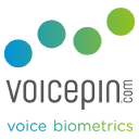 Voice Pin logo icon