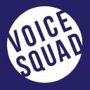 Voice Squad logo icon